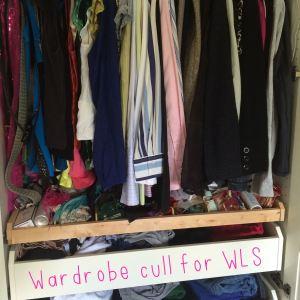 WardrobeCullWLS