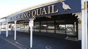 TheForagingQuail
